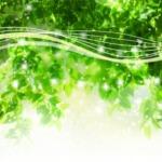 緑豊かなマイナスイオンのイメージの画像