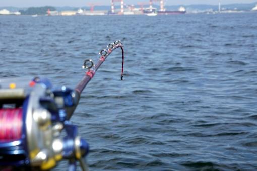 船釣り初心者のロッドの選び方は?賢く安く購入するポイント!