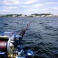 船釣り 船上の電動リール