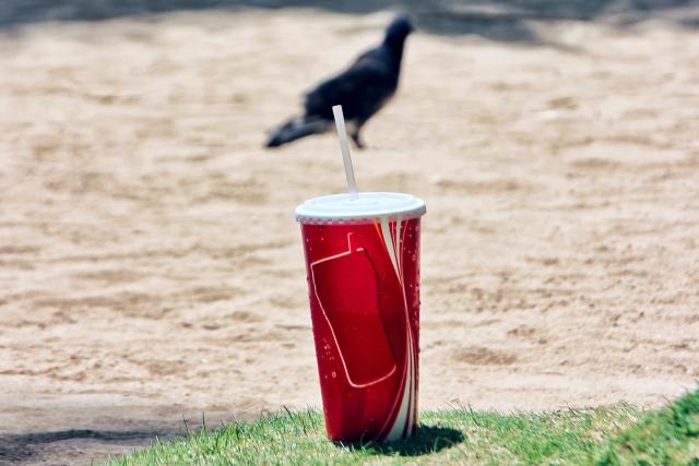 プラスチックのゴミ問題を連想する「鳥とコップ」